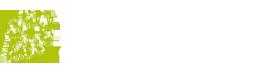 trybala logo